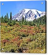 Paradise In Fall On Mt. Rainier 2 Acrylic Print