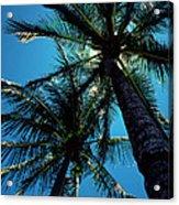 Paradise Island Acrylic Print by Mike Flynn