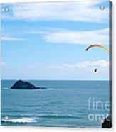 Paraglider On The Ocean Beach Acrylic Print