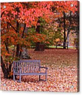 Park Bench In Fall Acrylic Print