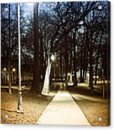 Park Path At Night Acrylic Print by Elena Elisseeva