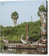 Party Barge Acrylic Print