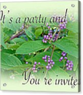 Party Invitation - General - American Beautyberry Shrub Acrylic Print by Mother Nature