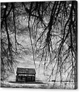 Past The Woods Acrylic Print