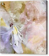 Pastel Floral  Acrylic Print