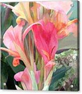 Pastel Pink Cannas Acrylic Print