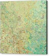 Pastle Green Stone Acrylic Print
