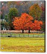 Pastoral Autumn Acrylic Print