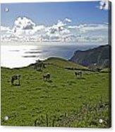 Pastoral Landscape Of Santa Maria Island Acrylic Print