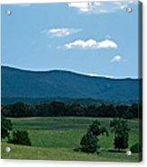Pastureland Grazers Acrylic Print