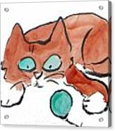 Pat Pat Pat Acrylic Print