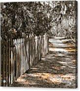 Path Along The Fence Acrylic Print