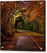 Path At Night Acrylic Print