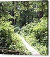 Path Of Light Acrylic Print