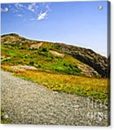 Path To Cabot Tower On Signal Hill Acrylic Print by Elena Elisseeva