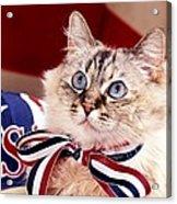 Patriotic Puddy Cat Acrylic Print