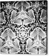 Patterns Of Black And White Acrylic Print