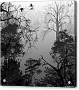 Peaceful Shades Of Gray Acrylic Print