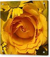 Peach Rose-yellow Daisies Acrylic Print