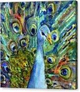 Peacock Party Acrylic Print