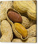 Peanuts 7 Acrylic Print