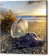 Pearl Of The Sea Acrylic Print