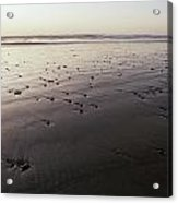 Pebbles Form Patterns On A Sandy Ocean Acrylic Print by Jason Edwards