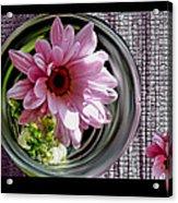Peeking Eyes Acrylic Print