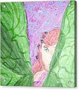 Peeking Fairy  Acrylic Print by Elizabeth Arthur