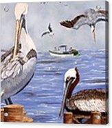 Pelican Bay Acrylic Print
