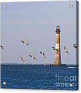 Pelicans And Morris Island Light 2 Acrylic Print