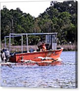 Pelicans Following Boat Acrylic Print