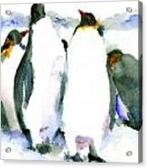 Penguin Lovers Acrylic Print