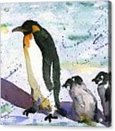 Penguin March Acrylic Print