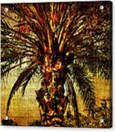 Perfect Palm Acrylic Print
