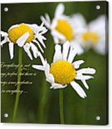 Perfection In The World Acrylic Print