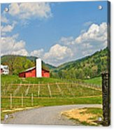 Persimmon Winery Acrylic Print