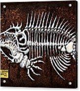 pescado Cuatro Acrylic Print