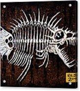 Pescado Dos Acrylic Print