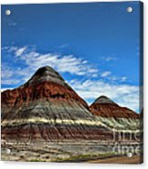 Petrified Forest National Park Acrylic Print