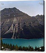 Peyto Lake - Canadian Rocky Mountains Acrylic Print