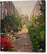 Philadelphia Courtyard - Symphony Of Springtime Gardens Acrylic Print by Mother Nature