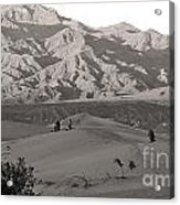 Photographers Capturing Images Of The Dunes At Death Valley  Acrylic Print