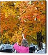 Picking Autumn Leaves 3982 Acrylic Print