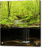 Pickle Spring In Missouri Acrylic Print
