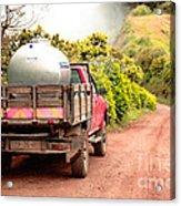 Pickup Truck Acrylic Print