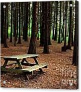 Picnic Table Acrylic Print by Carlos Caetano