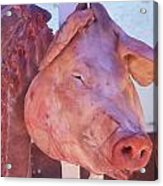 Pig In The Market Acrylic Print