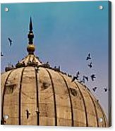 Pigeons Around Dome Of The Jama Masjid In Delhi In India Acrylic Print