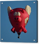Pigs Do Fly Acrylic Print